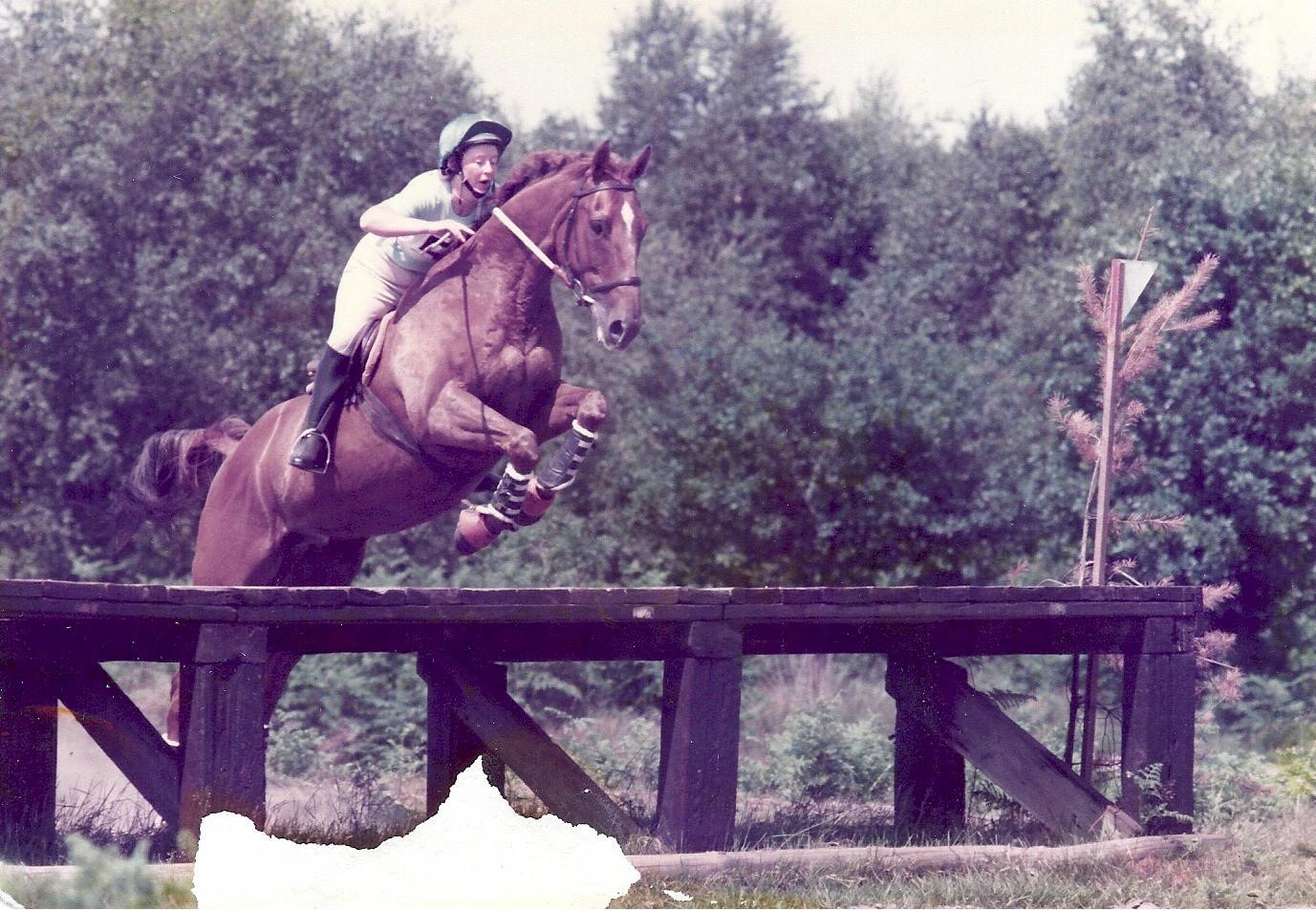 1983 Area HT Tweseldown